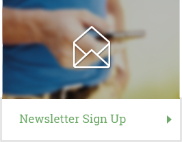 newsletterdk